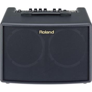 Roland AC-60 (avec housse)